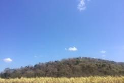 Venta de terreno sobre autopista Campeche ceiba