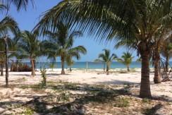 Venta de terreno con playa cerca de playa tortuga y sabancuy