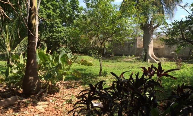 tterreno en venta cerca av benito juarez colindate con  los encinos